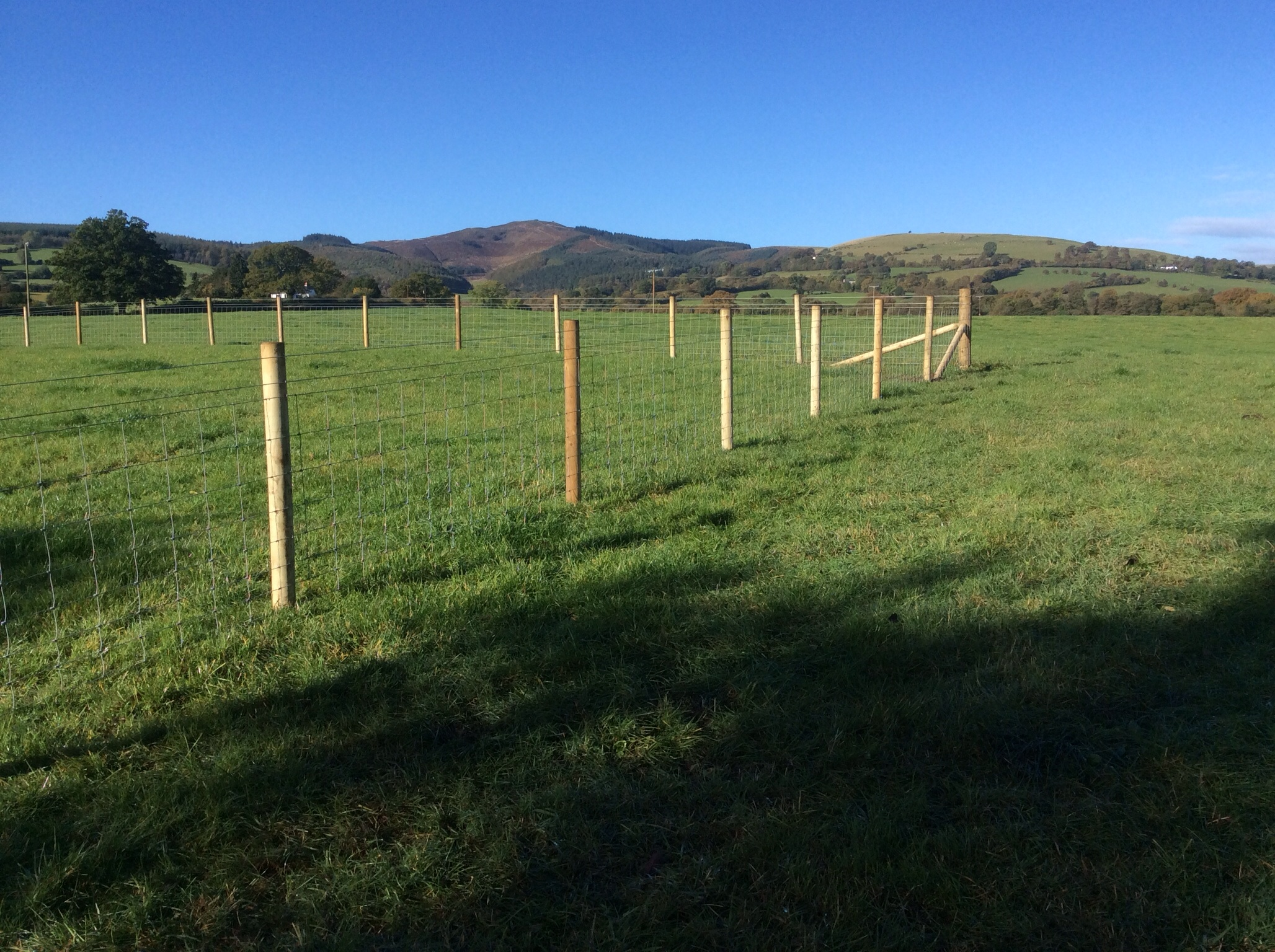 Gallery Post And Rail Fencing Post Rail Modernfencesupply