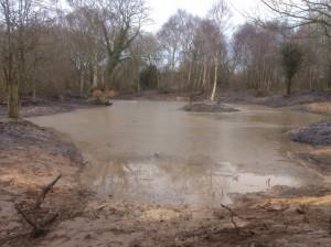 Pond De-silting