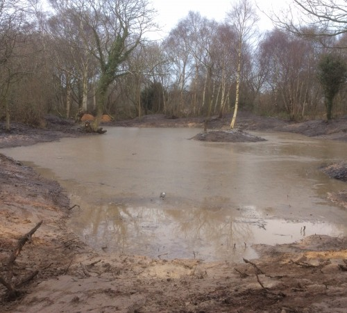 Pond De-Silting
