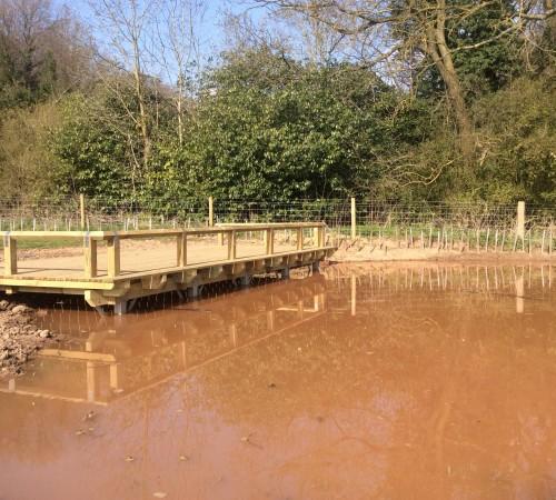 Dipping platform