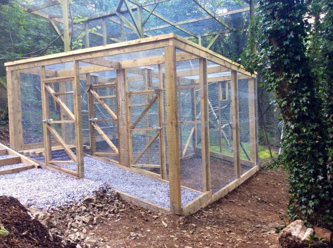 Pine Marten Enclosure